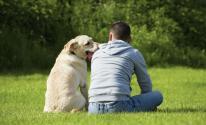 بالفيديو والصور: كلبة تعتني