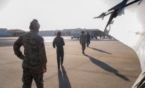 شاهدوا: تمساح يشلّ حركة قاعدة جوية أمريكية!