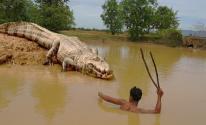 شاهدوا بالفيديو: لحظات مرعبة لرجل يقبض على تمساح بيديه العاريتين!