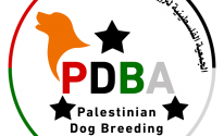 لأول مرة.. الإعلان عن تأسيس جمعية لتربية الكلاب في فلسطين