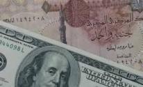 الحكومة المصرية