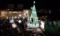 شجرة الميلاد
