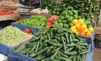 خضروات قطاع غزة