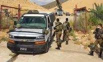 الاحتلال يقتلع 100 شجرة نخيل في الجفتلك بالأغوار