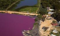 شاهدوا: تحول بحيرة إلى اللون