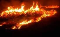 حرائق في منطقة الأشواك بالداخل المحتل