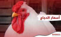 أسعار الدواجن واللحوم والبيض في قطاع غزة الجمعة 30 يوليو 2021