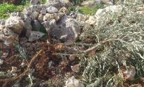 مستوطنون يقطعون أشجارًا ويدمرون خزانات مياه جنوب نابلس