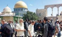 المملكة الأردنية تستنكر استمرار الانتهاكات