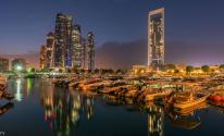 الإمارات:  مشاريع