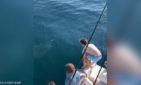 بالفيديو: .شابين يقفزان فوق سمكة قرش ..جنون أم شجاعة؟