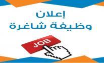 الإعلان عن وظيفة شاغرة في غزّة براتب 750 دولار شهريًا