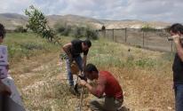 زراعة غزة