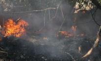 إطلاق بالونات حارقة نحو غلاف غزة