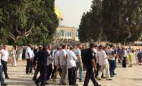 اقتحام المسجد الأقصى