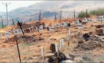 مقابر الارقام