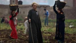 البنك الدولي: يدعم شركات مصرية بـ200 مليون دولار