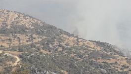 مصدر عسكري إسرائيلي يزعم إحباط تهريب أسلحة من لبنان