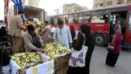 مصر: انخفاض
