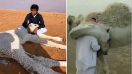 بالفيديو و الصور: سعودي يروي سر