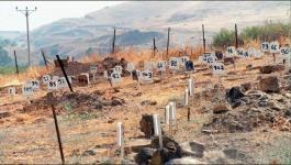 مقبرة الارقام