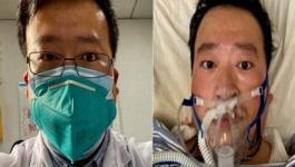الطبيب الصيني