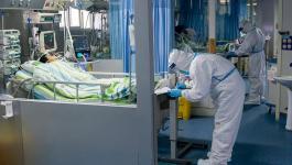فيروس كورونا الجاليات