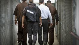 سجون الاحتلال.