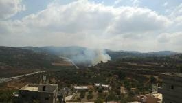 مستوطنون يشعلون النار في أراضي المواطنين بنابلس