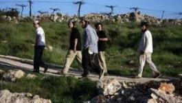 مستوطنون يحرقون اراضي زراعية جنوب نابلس