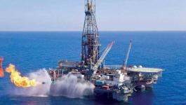 مصر   أول منصة رقمية لتوفير بيانات اكتشافات البترول
