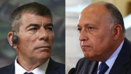 وزير الخارجية المصرية يجتمع مع نظيره