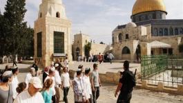 مستوطنون يقتحمون المسجد الأقصى بحراسة مشددة