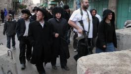 مستوطنون يعتدون على مواطنين في تل الرميدة بالخليل