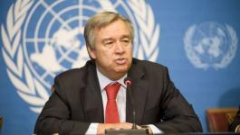 الأمين العام للأمم المتحدة يؤكد التزامه بتحقيق حل الدولتين.jpg