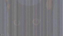 هل يمكن تجد الحيوان في هذه الصورة؟