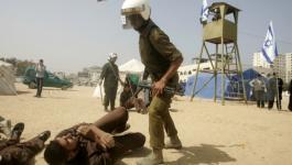 210 شهيداً ارتقوا في سجون الاحتلال نتيجة الإهمال الطبي والتعذيب.jpg