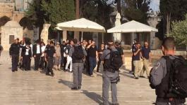 الاحتلال ينشر مزيداً من التعزيزات العسكرية وسط مدينة القدس المحتلة