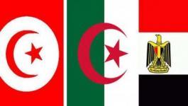 مصر والجزائر وتونس يتفقون على إعداد قائمة بالمنظمات الإرهابية في ليبيا