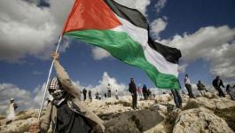 علم فلسطين 2