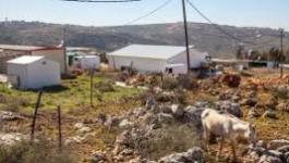 مستشار حكومة الاحتلال يعتزم شرعنة 13 موقع استيطاني بالضفة.jpg