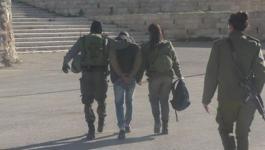 الاحتلال يعتقل شاباً بزعم حيازته سكيناُ قرب الحرم الإبراهيمي