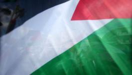 فلسطينن