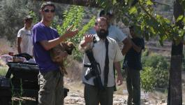 مستوطنون يطلقون النار صوب مزارعين يطا