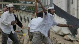 مستوطنون يعندون على منازل المواطنين شرق قلقيلية