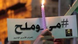 لخصت اللّجنة الإعلامية المنبثقة عن هيئة شؤون الأسرى والمحررين ونادي الأسير الفلسطيني.jpg