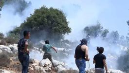 الاحتلال يصيب عشرات المواطنين بالاختناق في نعلين