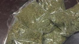 نابلس: القبض على تاجر مخدرات بحوزته كيلو غرام ماريجوانا
