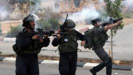 إصابات بالاختناق إثر مواجهات مع الاحتلال شمال الخليل.jpg