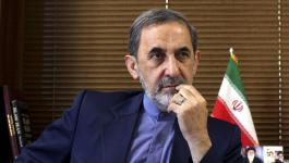 مستشار المرشد الإيراني للشؤون الدولية، علي أكبر ولايتي.jpg
